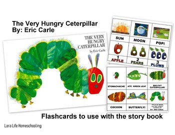 THE VERY HUNGRY CATERPILLAR - FLASHCARDS FOR STORY BOOK