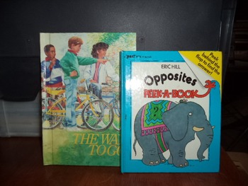 THE WAY TO GO  OPPOSITES PEEK A BOOK  (SET OF 2)