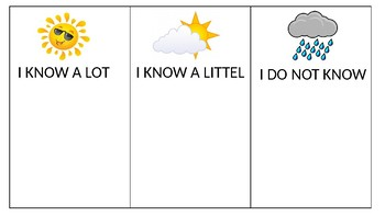 THE WEATHER STRATEGY