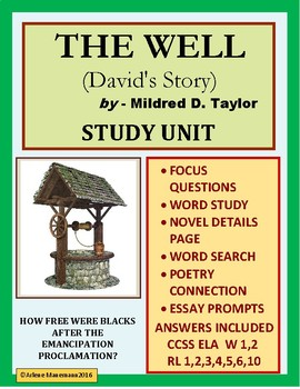 THE WELL, David's Story - Study Unit