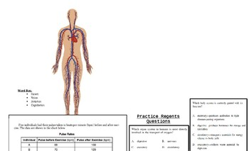 THe Circluatory System Student Workbook