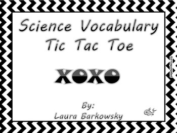TIC TAC TOE Vocabulary Activity