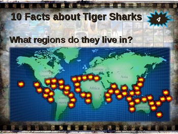 TIGER SHARKS: 10 facts. Fun, engaging PPT (w links & free graphic organizer)