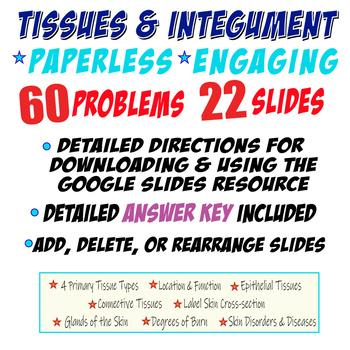 TISSUES & INTEGUMENT~ ANATOMY ~Digital Resource for Google Classroom~