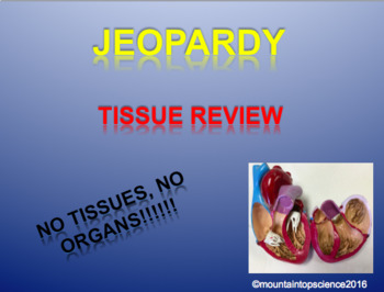 TIssue Review Jeopardy
