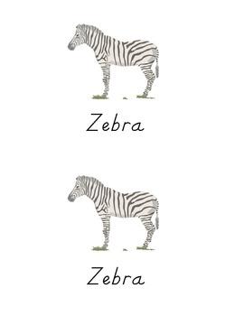 TK Easy Reader -- Wild Animals