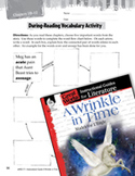 A Wrinkle in Time Vocabulary Activities (Great Works Series)