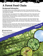 Biomes and Ecosystems Inquiry Card - A Forest Food Chain