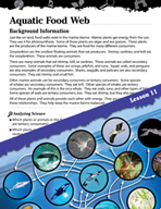 Biomes and Ecosystems Inquiry Card - Aquatic Food Web