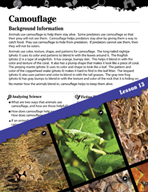 Biomes and Ecosystems Inquiry Card - Camouflage