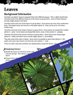 Biomes and Ecosystems Inquiry Card - Leaves