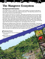 Biomes and Ecosystems Inquiry Card - The Mangrove Ecosystem