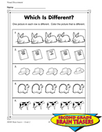 Grade 2 Visual Discernment Critical Thinking Activities