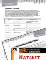 Hatchet Vocabulary Activities (Great Works Series)