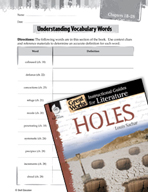 Holes Vocabulary Activities (Great Works Series)