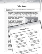 Language Arts Test Preparation Level 2 - Wild Again (Practicing for Today's Tests Series)