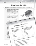 Language Arts Test Preparation Level 4 - Little Bugs, Big Stink (Practicing for Today's Tests Series)