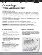 Living Organisms Inquiry Card - Camouflage How Animals Hide
