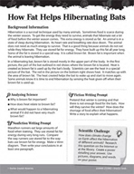 Living Organisms Inquiry Card - How Fat Helps Hibernating Bats