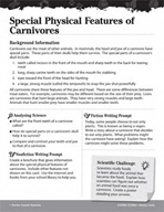 Living Organisms Inquiry Card - Special Physical Features of Carnivores