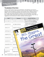 M.C. Higgins, the Great Vocabulary Activities (Great Works Series)