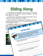 Read and Succeed Comprehension Level 2: Asking Questions Passages and Questions