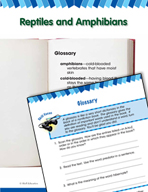 Read and Succeed Comprehension Level 2: Glossary Passages and Questions