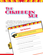 Read and Succeed Comprehension Level 3: Topic Sentences Pa