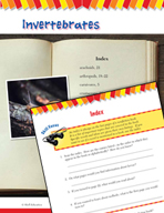 Read and Succeed Comprehension Level 4: Index Passages and