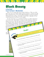 Read and Succeed Comprehension Level 4: Predicting Passages and Questions
