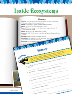 Read and Succeed Comprehension Level 6: Glossary Passages and Questions