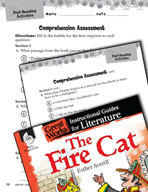 The Fire Cat Comprehension Assessment (Great Works Series)