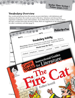 The Fire Cat Vocabulary Activities (Great Works Series)