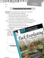 Tuck Everlasting Comprehension Assessment (Great Works Series)