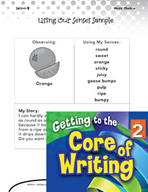 Writing Lesson Level 2 - Using Our Senses