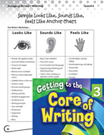 Writing Lesson Level 3 - Working in Writer's Workshop