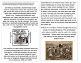 TN SS 4.58 Eli Whitney, Cotton Gin, Impact on Slavery