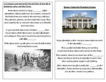 TN SS 4.61 Life of a Slave on a Plantation