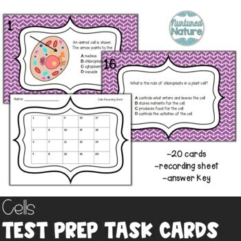 TN TCAP 5th Grade Science Review Task Cards ~ Cells