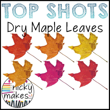 NickyMakes - TOP SHOTS - Dried Maple Leaves
