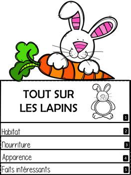 TOUT SUR LES LAPINS! Livre à rabats (French Flip Book)