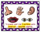 TPR Lesson to teach about My Five Senses Mis Cinco Sentidos Teacher Book