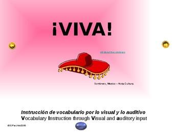 ¡VIVA! Set 3 - Comprehensible Input - Listening - Spanish 1