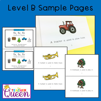 TR- Blend Readers Levels B and D (Printable and Projectable Books)