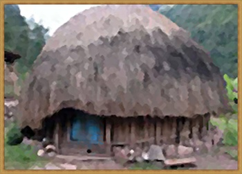 TRADITIONAL HOME 35