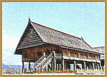 TRADITIONAL HOME 52