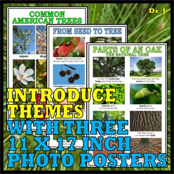 TREES ACTIVITY PACK (The Forest Biome)