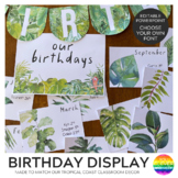 TROPICAL COAST Birthday Display Pack