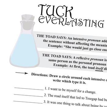 TUCK EVERLASTING Grammar Pronouns Intensive Reflexive