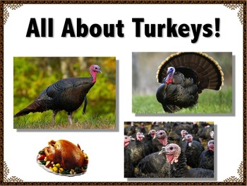 Turkey Activity //  ALL ABOUT TURKEYS // Thanksgiving / Po